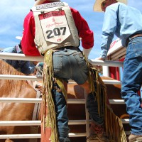 Calgary Stampede: A Few Photos From 2011, Centennial Celebration In 2012