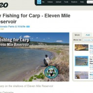 Great Videos: Fly Fishing For Carp When The Weather Was Much Better
