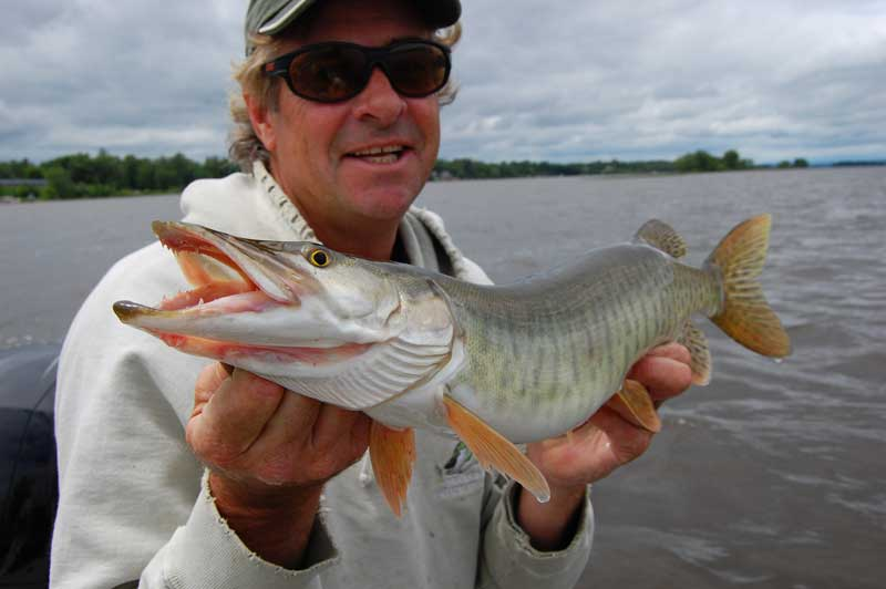 The future is friendly: John with what might end up being the smallest musky of the season.