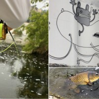 "Podcasts, Videos, E-Magazines: 2013 Has Been A Good Year For ""Carp On The Fly"" Online Content"